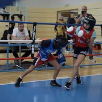 light boxing cup Geneve partie 2